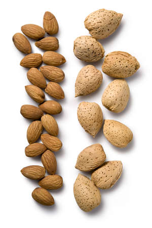shelled: Whole almonds shown shelled and in their shells on a white background