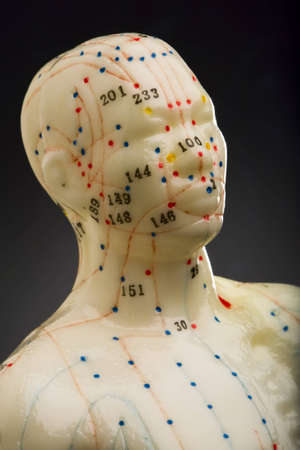 Close-up of mannequins head used for demonstration of acupuncture
