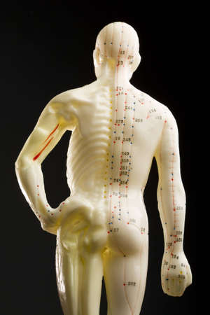 Acupuncturists doll isolated on black