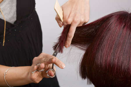 hairdressing scissors: Hairdresser at work cutting customers hair Stock Photo