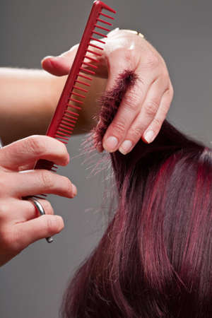 Close-up of hairdressers hands cutting clients hair photo