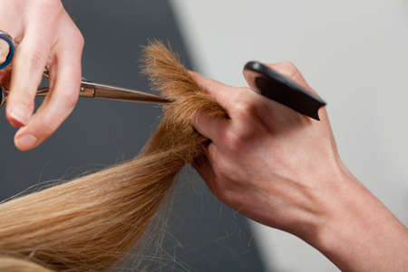 Close-up of hairdresser's hands cutting hair Stock Photo - 7700870
