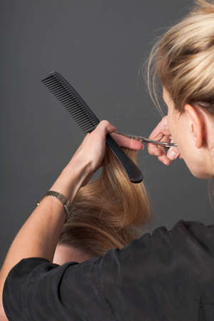A hairdresser cutting a client's hair photo