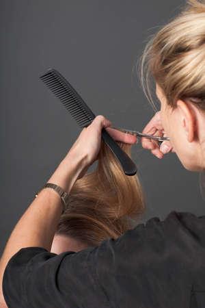 A hairdresser cutting a client's hair