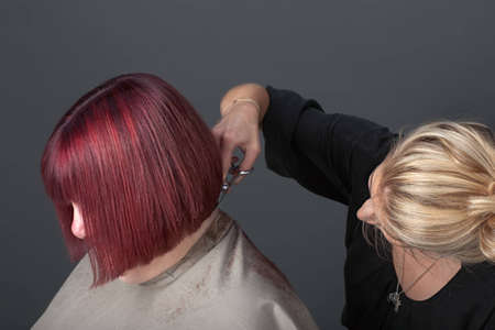 Professional hairdresser cutting customer's hair photo