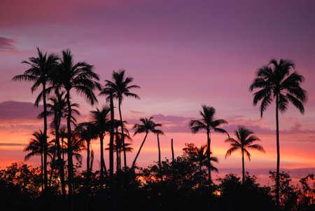 laguna: Laguna Kiani Sunset, Vieques, Puerto Rico