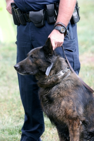 K-9 Unit of police office and dog Stock Photo
