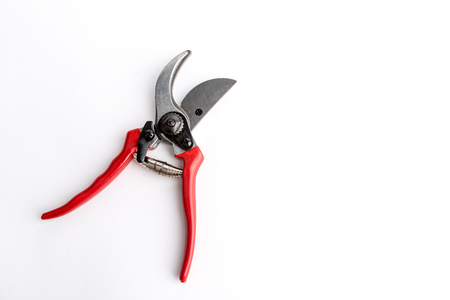 Red garden pruner on the white background