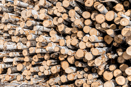 Firewood for the winter, stacks of firewood, pile of firewood