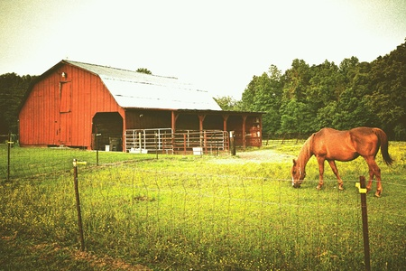 style: Old vintage red barn and horse grazing out in the country.