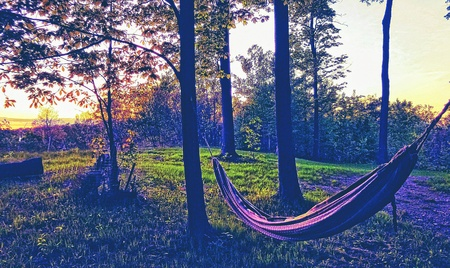 artistic: An empty hammock hangs outside amid trees and green grass during a sunset.