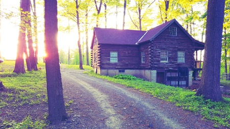 style: A log cabin out in the woods with evening sunglare.