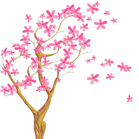 Sakura  Seasonal background  Vector