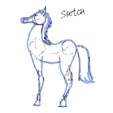 vector horse Illustration
