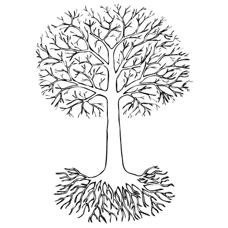 origin: Tree with roots on white background. Sketch Illustration