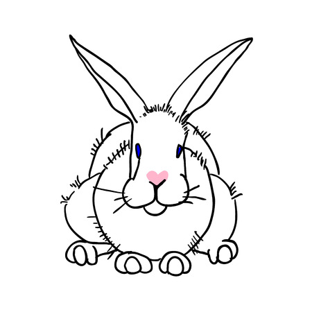rabit: Hand drawn vector rabit Illustration