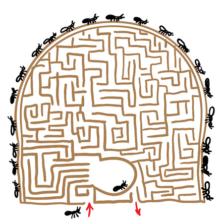 anthill: labyrinth anthill. vector illustration Illustration