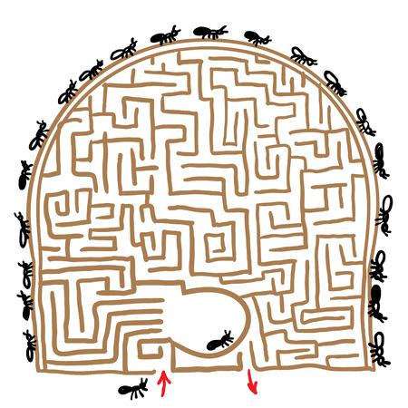 anthill: labyrinth anthill. vector illustration Illustration