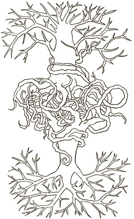 entwined: Two trees entwined roots. Hand drawn vector illustration Illustration