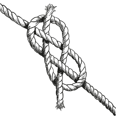 fixed line: Illustration of knot isolated on white. Vector