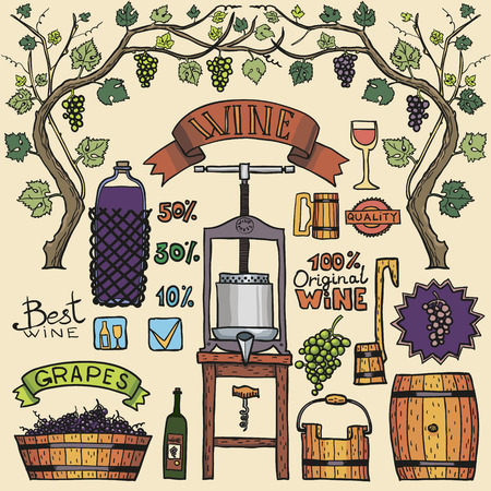 Hand sketched illustrations. Wine process with winemaking elements.