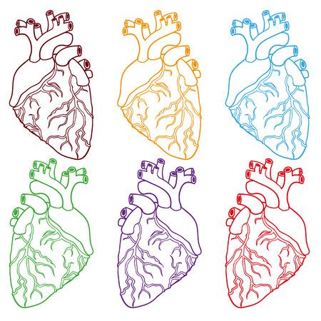 vas: set of six Human hearts. Hand-drawn Vector illustration.