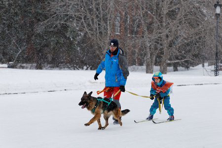 Ulyanovsk, Russia - February 15, 2015. Volga Quest Sled dog race 2015. The youngest participant with his coach on Lenin Square. 新闻类图片
