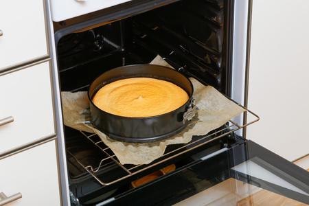 桜と国内のキッチンでメレンゲと自家製チーズケーキ 写真素材