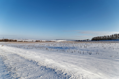 far away: Wintry snowy Landscape. Field and trees in the distance far away. Stock Photo