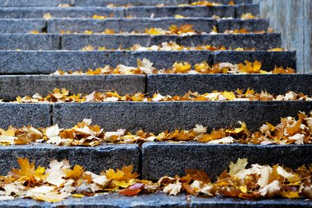Closeup steps of stone stairway with yellow fall foliage. Shallow focus. Reklamní fotografie