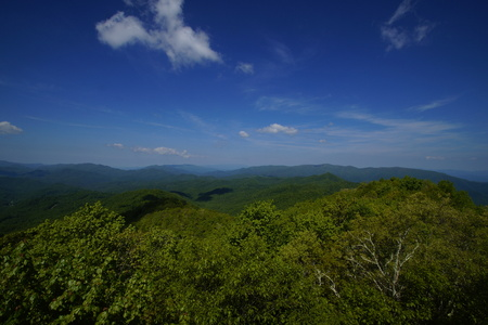 great smoky mountains: Viewing the Great Smoky Mountains