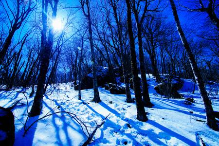 appalachian trail: Cold Winter Sun Stock Photo