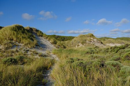 Western Australia Broke - Coastal dune landscape