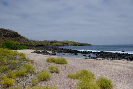 Ecuador Galapagos Islands - San Cristobal Island Scenic Wildlife beach at Bahia Baquerizo Moreno