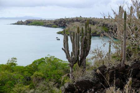 Ecuador Galapagos Islands - Santa Cruz Island Viewpoint hiking path Camino a las grietas