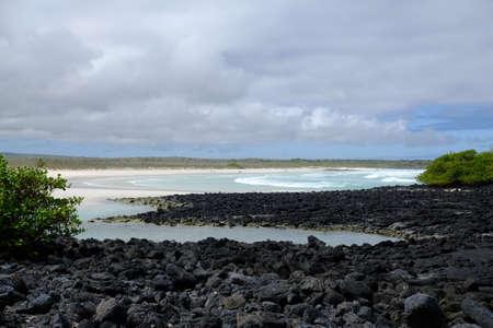Ecuador Galapagos Islands - Santa Cruz Island Scenic view Galapagos Beach at Tortuga Bay