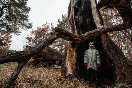 man child standing inside a tree trunk