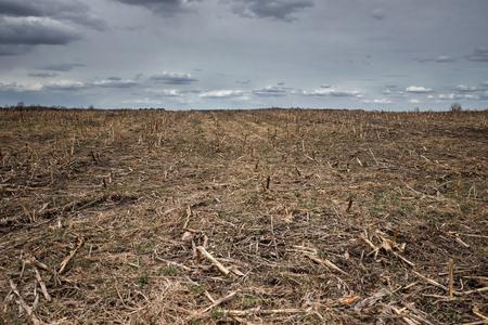 在为春季种植庄稼而犁过的农田上的垄沟。透视中的水平视图。