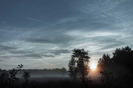 Mysterious, mystical, gloomy landscape at sunset, fog over the meadow. A magical twilight situation.
