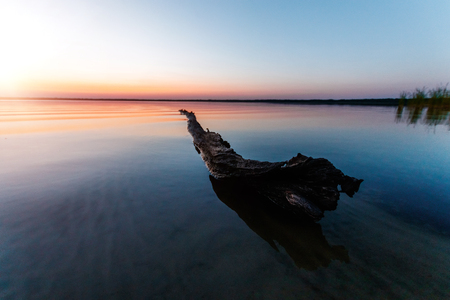 Beautiful, pink sunset with a textured log in the water in the foreground.
