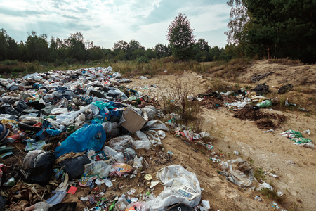 Rubbish in nature, in the forest. A large rubbish heap, degraded rubbish. A bunch of toxic residues. The concept of pollution of nature, the accumulation of plastic, a catastrophe.