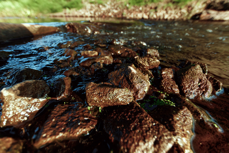 Mountain creek with stones near green grass in sunny day. Clean water stream in fast brook in sunlight. Amazing natural texture.