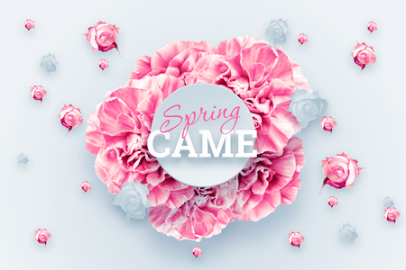 Spring background, pink, red and white carnations on a light background. inscription spring came. Floral background. copy space, flat lay, top view, Mixed media. Valentine's Day, March 8 Imagens