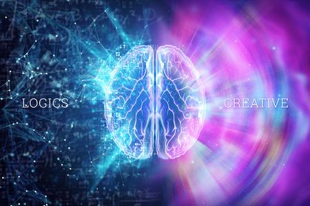 Cerebro humano sobre un fondo azul, la inscripción es creativa y lógica, el hemisferio es responsable de la lógica y es responsable de la creatividad. Ilustración 3D, render 3D