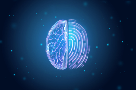Half of the brain and fingerprint view from above. The concept of identity, unique data. 3D illustration, 3D render