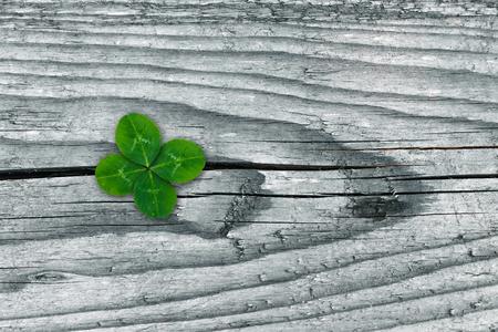 Clovers on grunge old aged wooden background, shamrock leaves, saint patrick's day Reklamní fotografie - 123125212