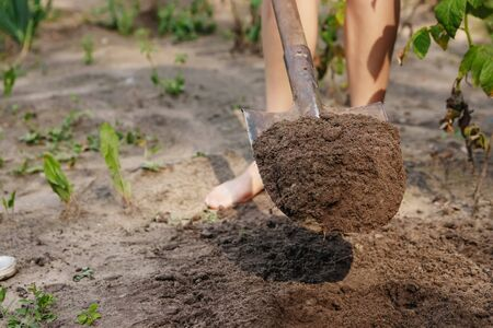 A close up of shovel in the ground
