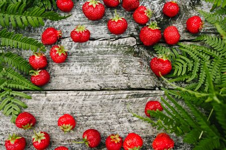 Strawberry on a wooden gray background, fern leaves, strawberry season, opy space for text, Top View.