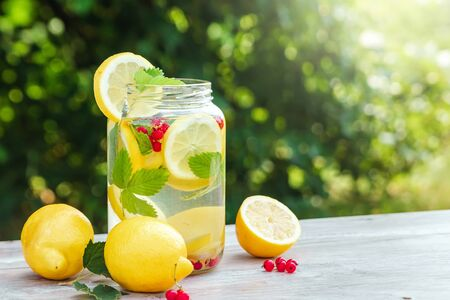 Homemade lemonade with fresh lemons, mint and cranberries. A can of lemonade against a background of green foliage, beautiful bokeh. The concept of fresh lemonade, cold juice, heat, summer coolness.