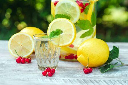 Hausgemachte Limonade mit frischen Zitronen, Minze und Preiselbeeren. Eine Dose Limonade vor einem Hintergrund von grünem Laub, schönes Bokeh. Das Konzept von frischer Limonade, kaltem Saft, Hitze, Sommerkühle.